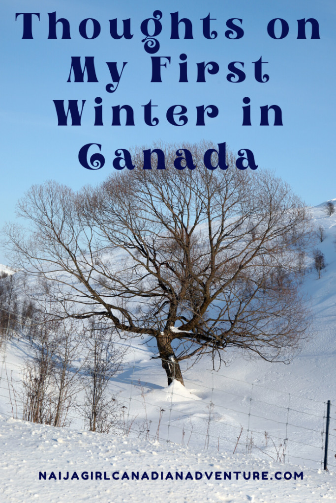 Thoughts on My First Winter in Canada Living in Ontario