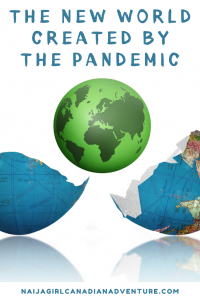 The new world created by the pandemic